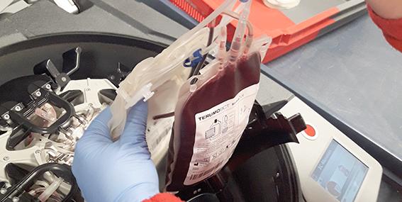 Unidad de sangre en la centrífuga