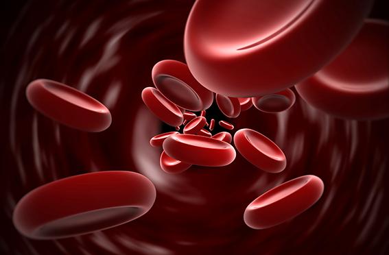 Las innovaciones en el tratamiento mejoran la calidad de vida del paciente hemofílico en la última década